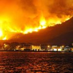 Incendies de forêt… acte prémédité ou phénomène saisonnier ? Démêler le vrai du faux