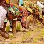 Enjeux des changements climatiques pour les pays du Sud